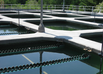 xypex Raccoon Creek Water Treatment Plant